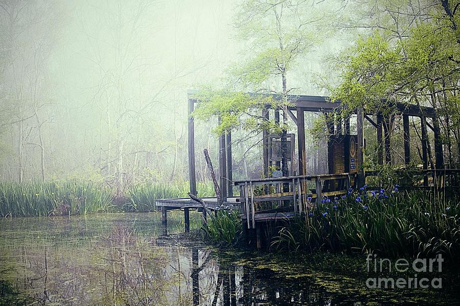 Bayou Photograph - Im Going Back Someday by Katya Horner