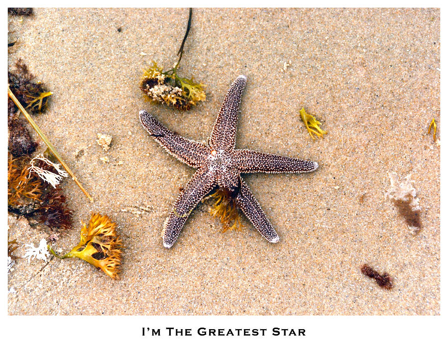 Conceptual Photograph - Im The Greatest Star by Lorenzo Laiken