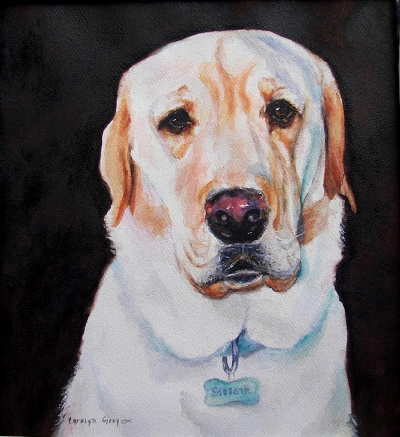 Yellow Labrador Painting - Labrador Retriever Portrait - Seriously? by Carolyn Gray