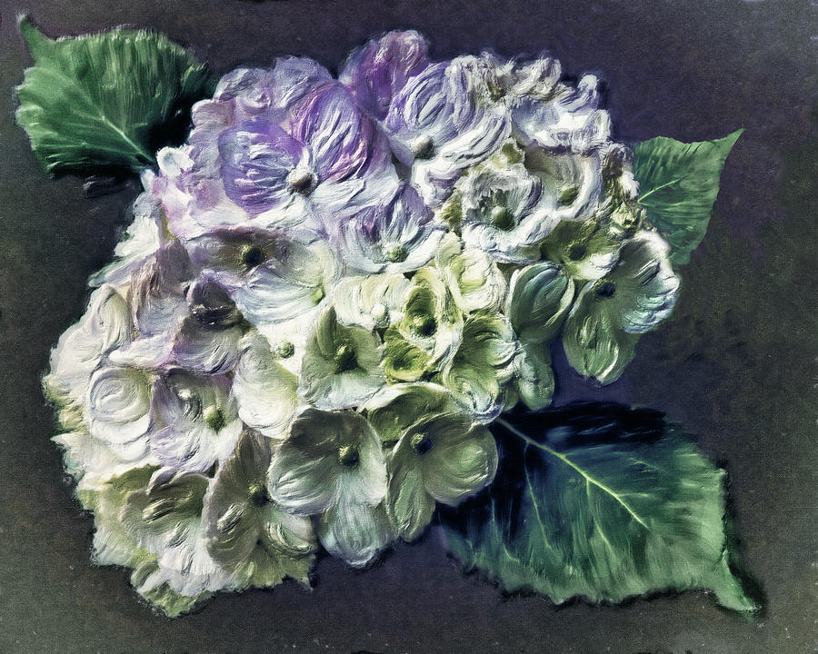 Digital Painting Digital Art - Impasto Hydrangea by Jill Balsam