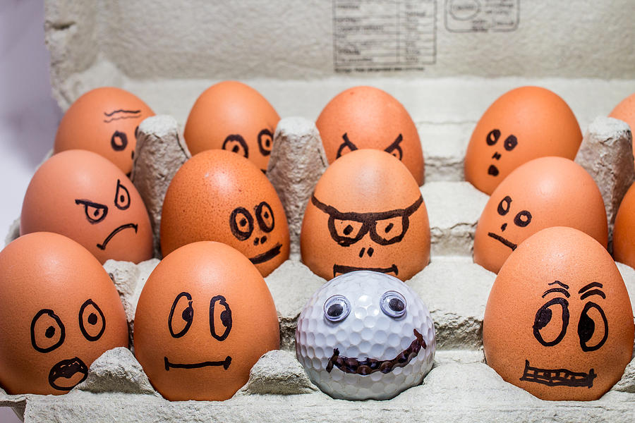 Eggs Photograph - Impostor. by Gary Gillette