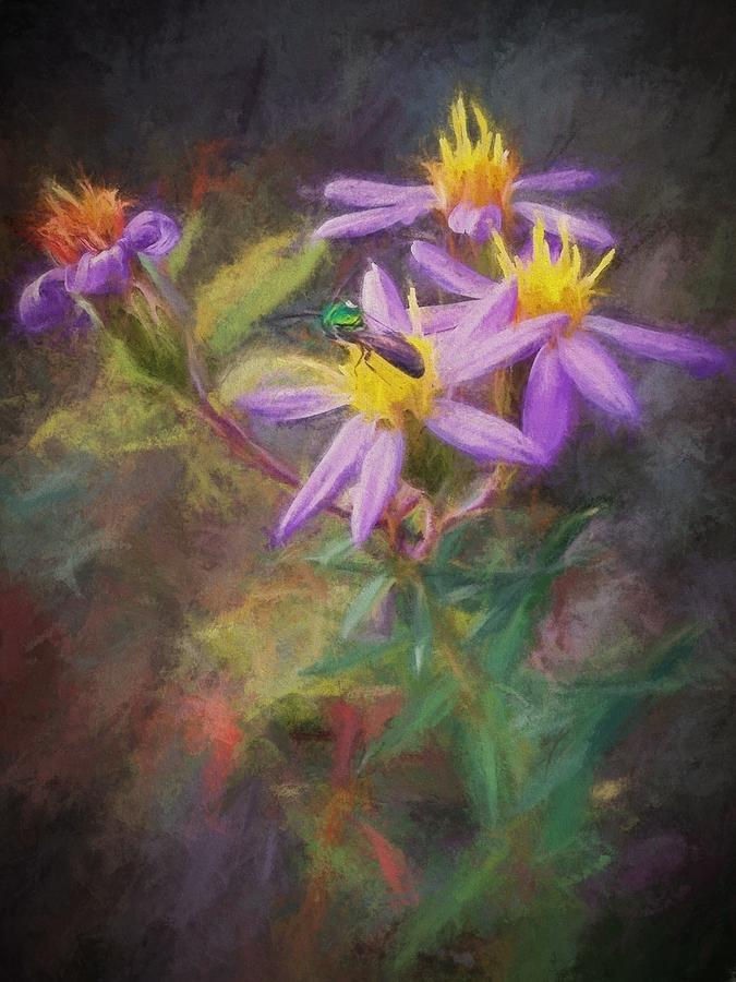 Kentucky Photograph - Impressions Of An Aster by Diana Boyd