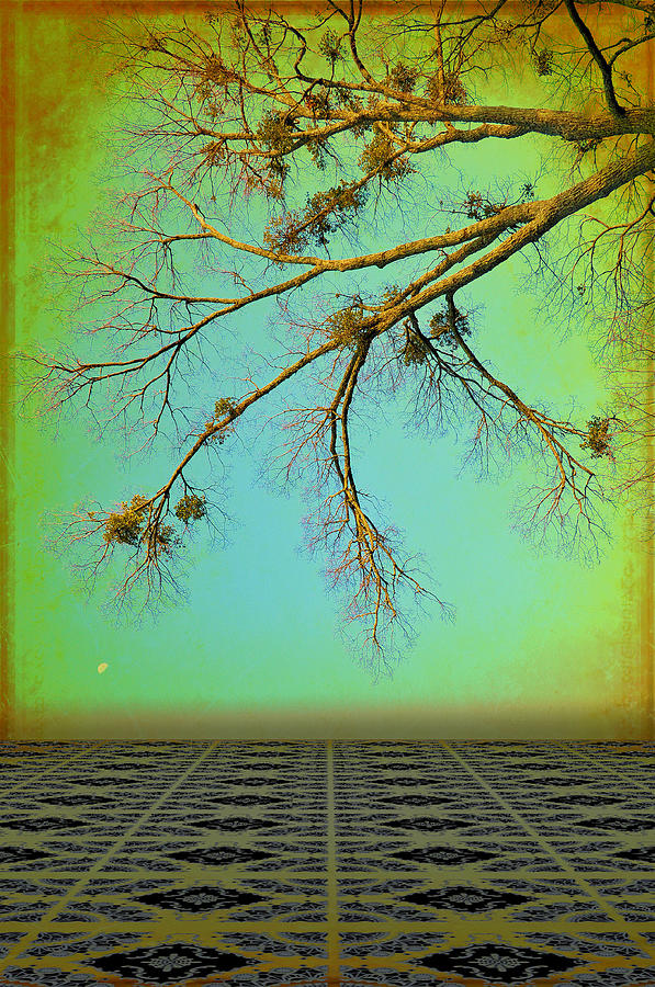 Abstracts Photograph - In A Land Far Far Away by Jan Amiss Photography