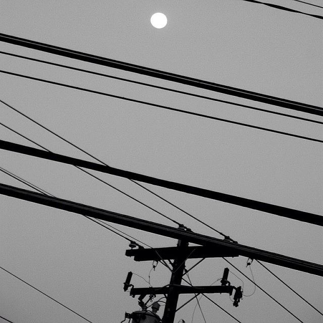 Wires Photograph - In Between The Moon And You Angels Get by Gia Marie Houck