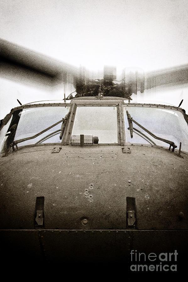 In Flight Photograph by Margie Hurwich