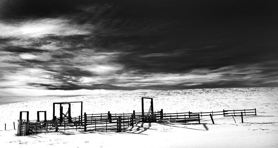 Corral Photograph - In The Bleak Midwinter by Theresa Tahara