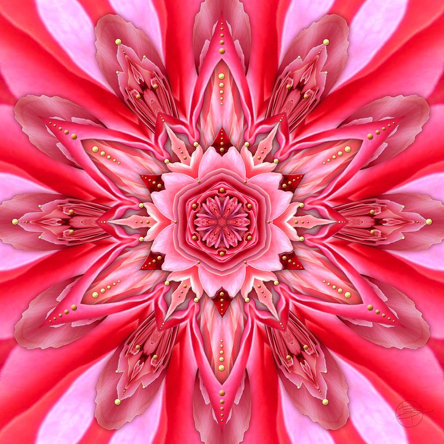 Mandala Photograph - In the Court of the Crimson Queen by Karen Hochman Brown