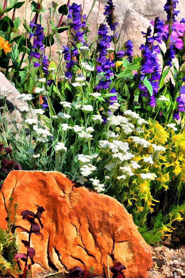 Plants Photograph - In The Garden by Brian Davis