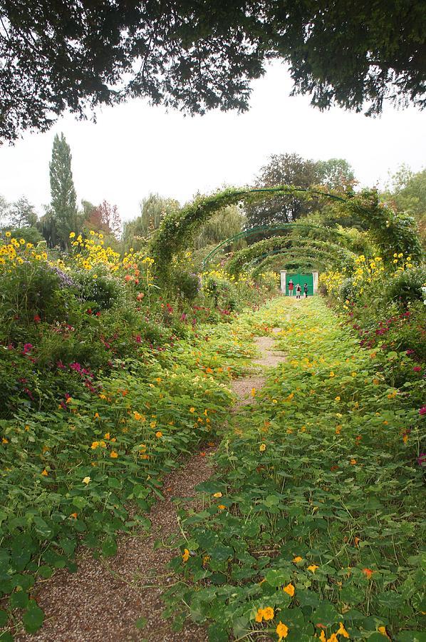 Garden Photograph - In The Garden  by Kristine Bogdanovich