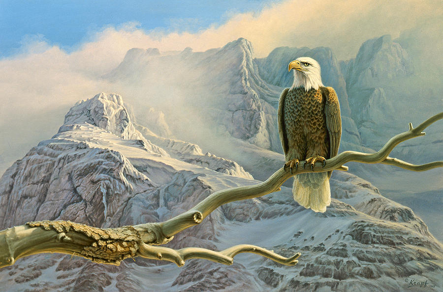Wildlife Painting - In The High Country-eagle by Paul Krapf