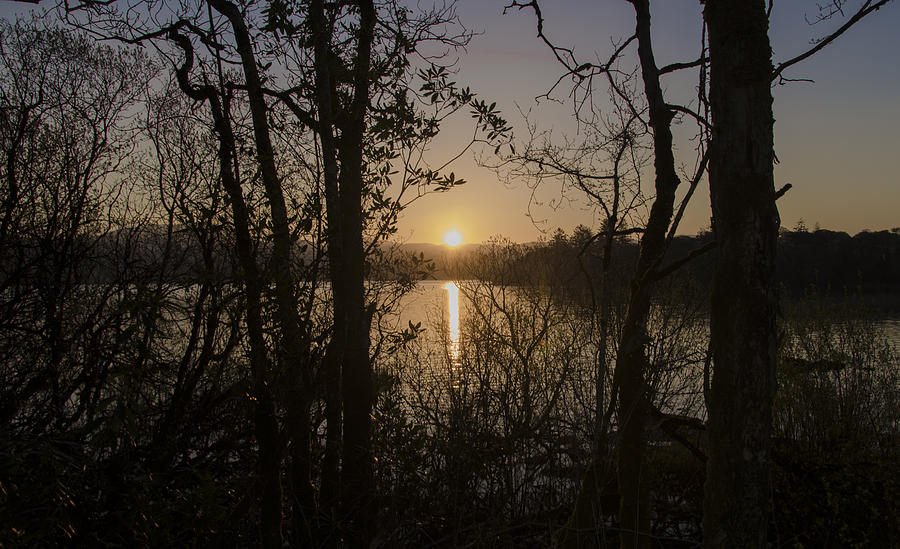 Morning Photograph - In The Morning At Lough Eske by Bill Cannon