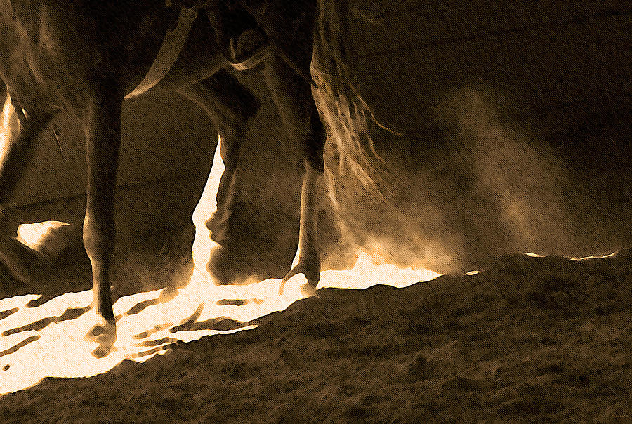 Horse Photograph - In The Practice Ring by Theresa Tahara