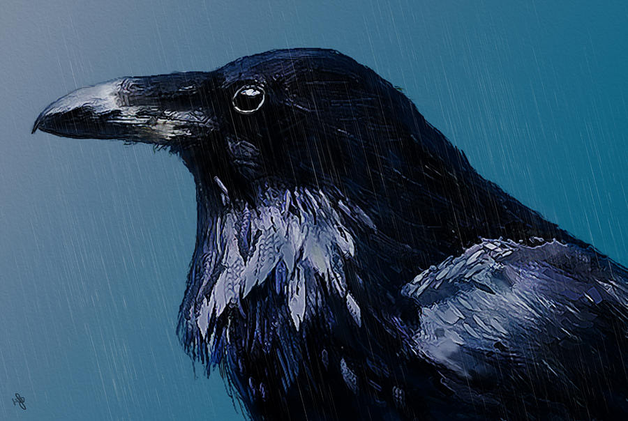 Bird Digital Art - In The Rain by Hazel Billingsley