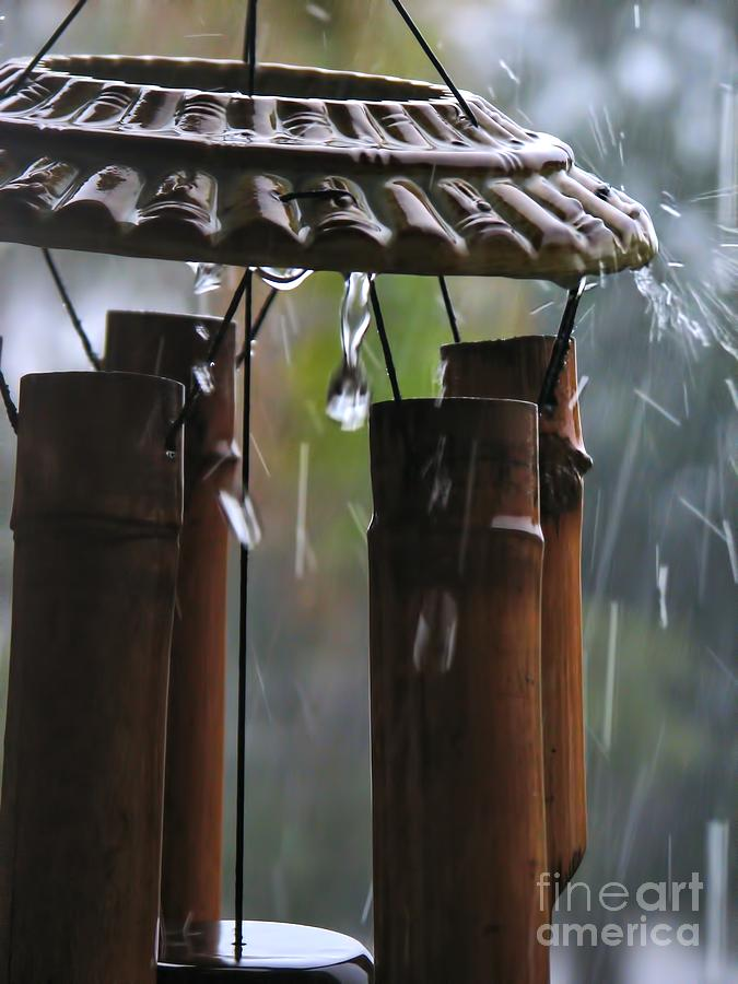 Wind Photograph - In The Rain by Peggy Hughes