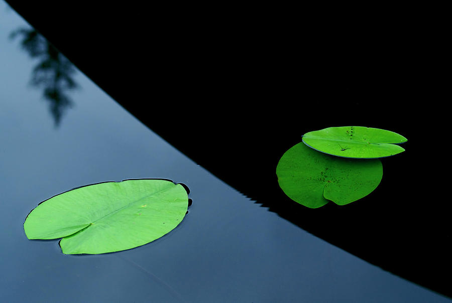 Water Photograph - In The Shade Off A Boat by Allan Wallberg