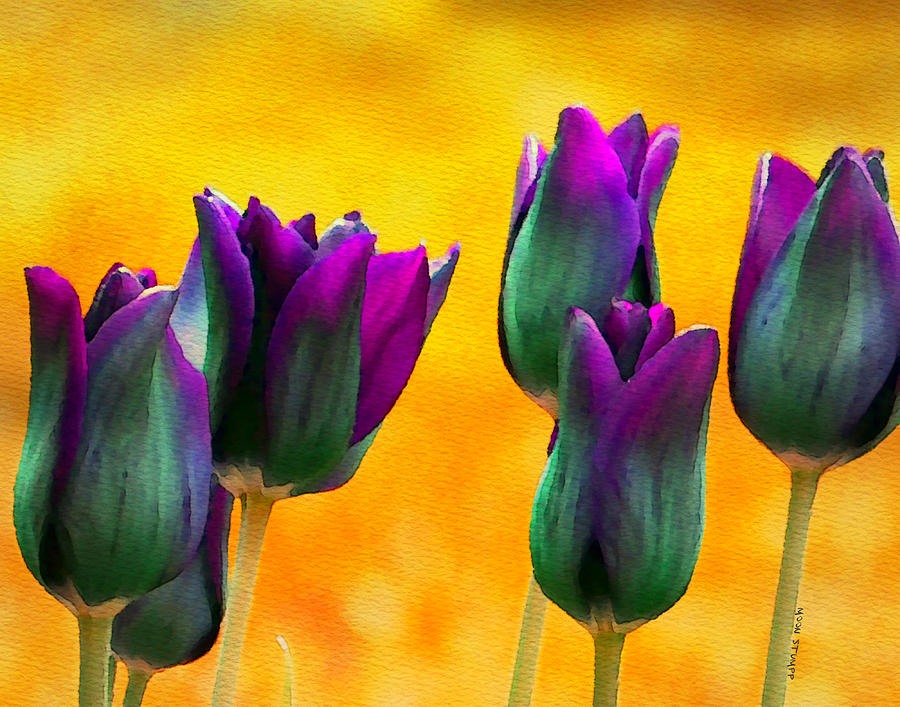 Floral Painting - In The Sunshine by Moon Stumpp