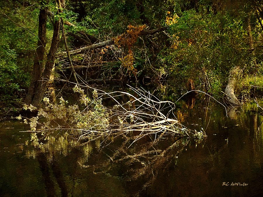 Forest Painting - In The Wild Wood by RC deWinter