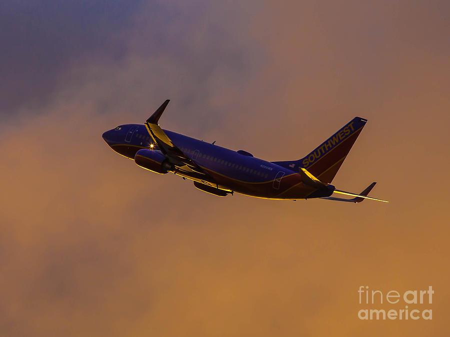 Aviation Photograph - In Their Element by Alex Esguerra
