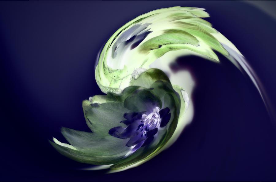 Green Photograph - Incana abstract 1 by Paulina Roybal