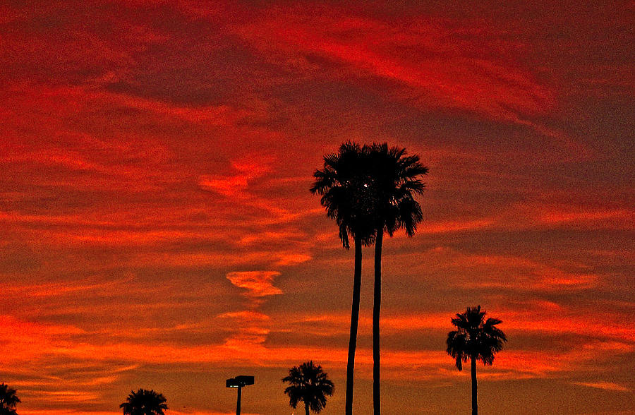 Sunset Photograph - Incense by Marquis Crumpton