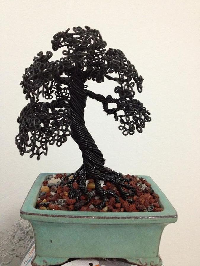 Bonsai Sculpture - Incline Tropical Black Tree by Alejandro Barreto