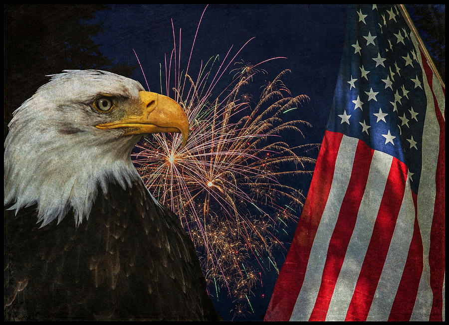 Independence Day Photograph - Independence Day by Angie Vogel