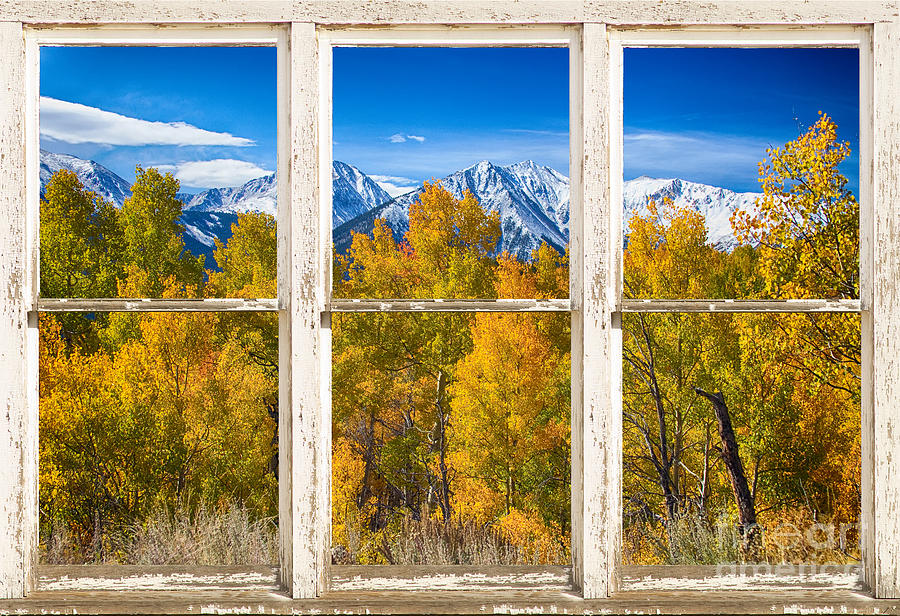 Independence Pass Autumn White Peeling Window View Photograph