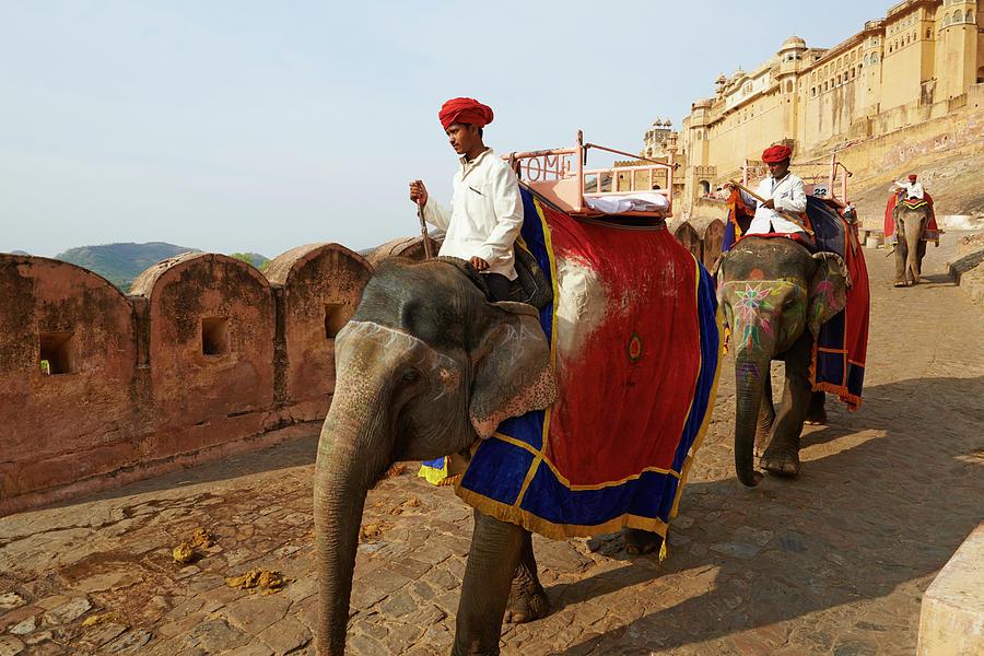 India, Rajasthan, Jaipur The Pink City Photograph by Tuul & Bruno Morandi