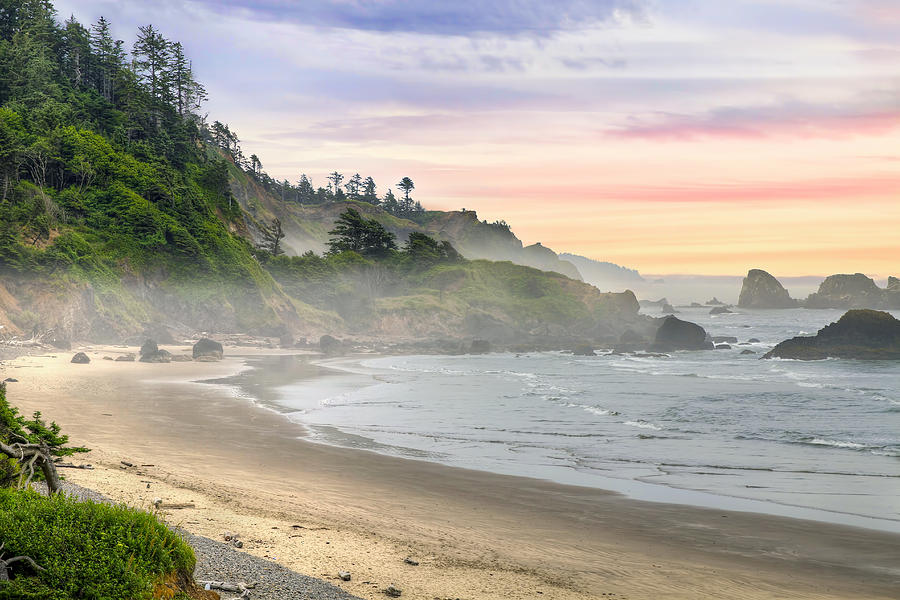 Indian Photograph - Indian Beach One Foggy Morning by David Gn