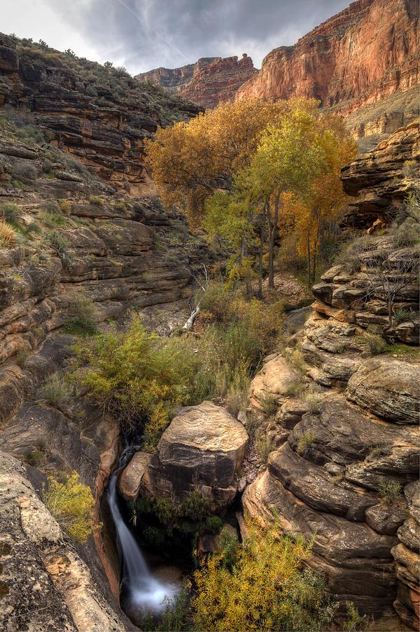 Grand Canyon Photograph - Indian Creek by Kiril Kirkov