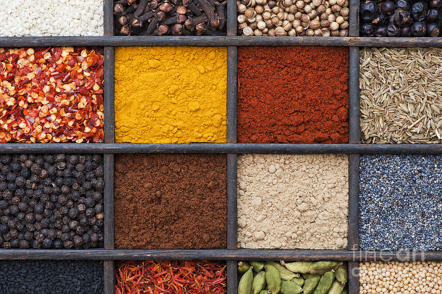 Indian Photograph - Indian Spices by Tim Gainey