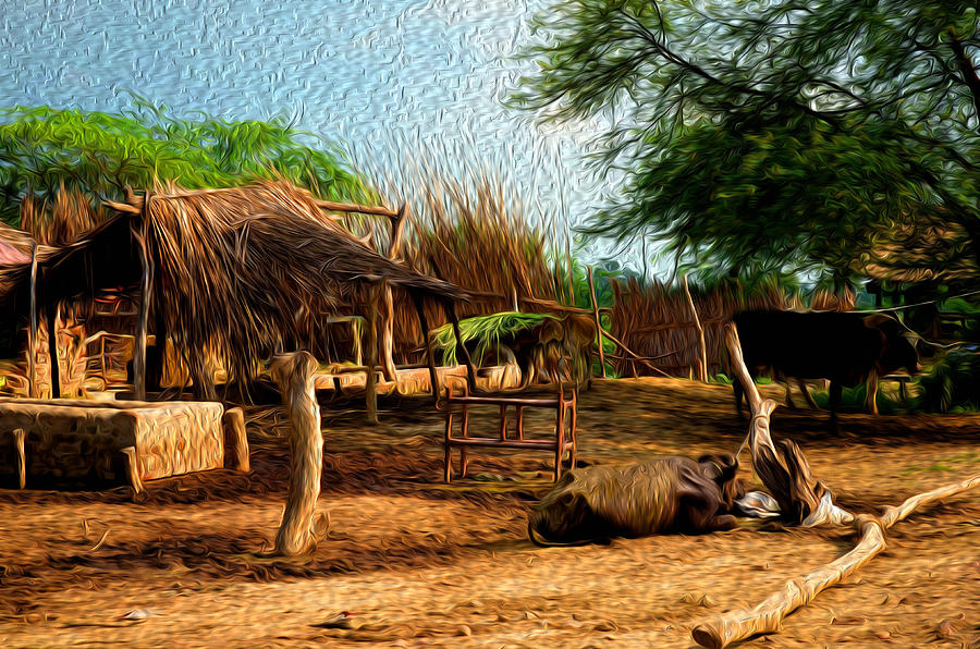 Hut Photograph - Indian Village by Deepti Chahar