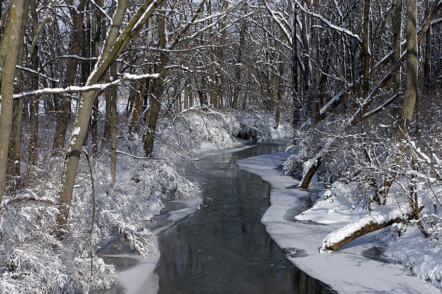 Winter Photograph - Indiana Winter by Thomas Fouch
