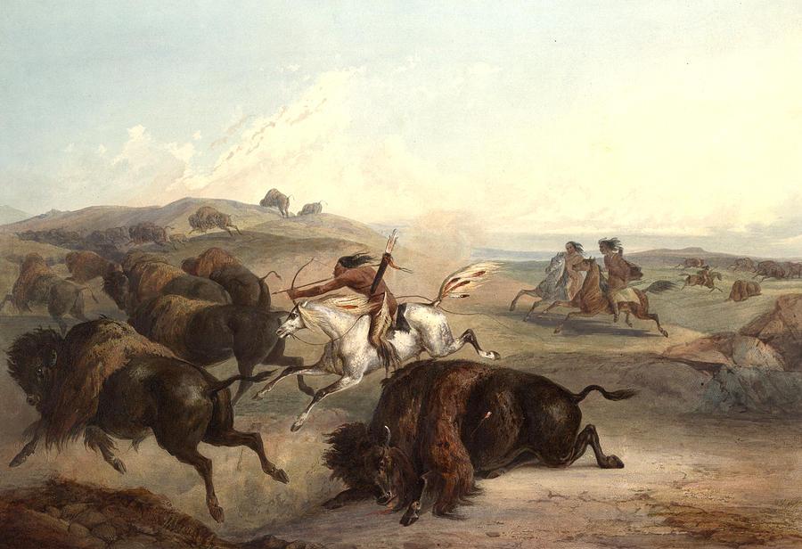 Manan Indians 1843 Digital Art - Indians Hunting The Bison by Karl Bodmer