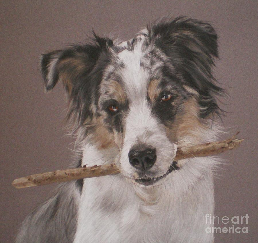 Dog Pastel - Indy - Border Collie by Joanne Simpson