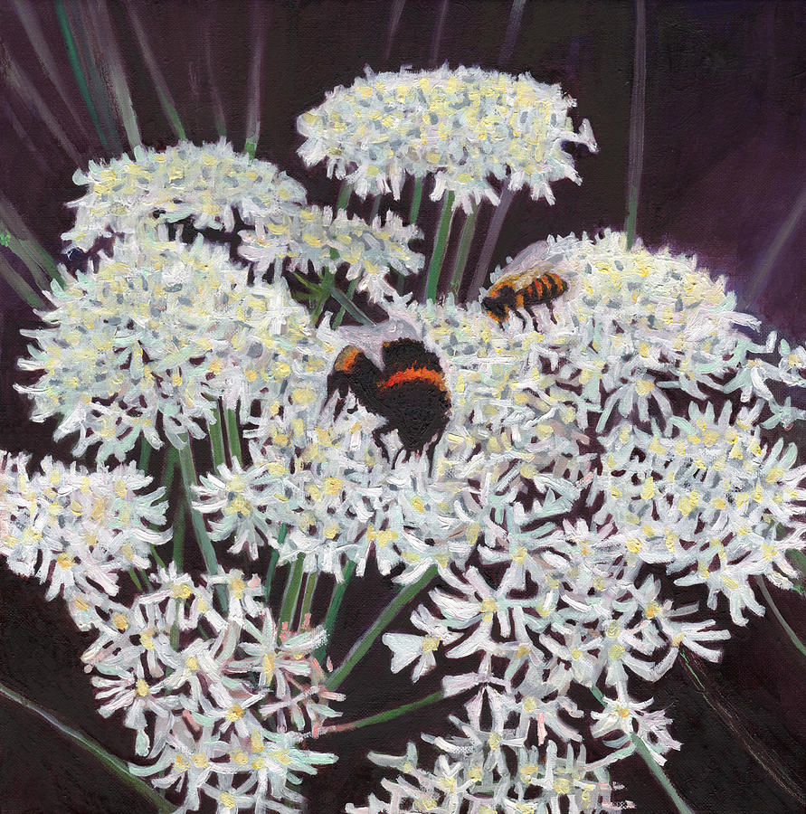 Bees Painting - Inflorescence by Helen White
