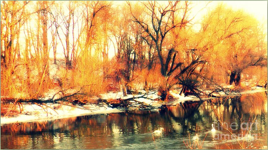Natura Photograph - Inizio Inverno by Halina Nechyporuk