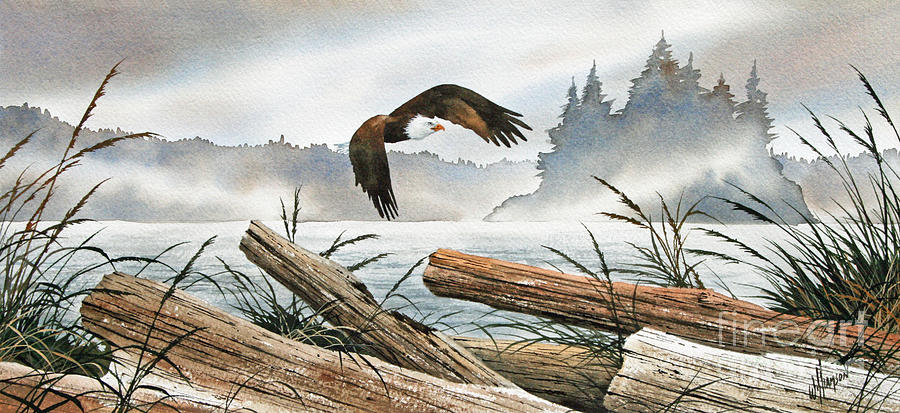 Inland Sea Eagle Framed Print Painting - Inland Sea Eagle by James Williamson