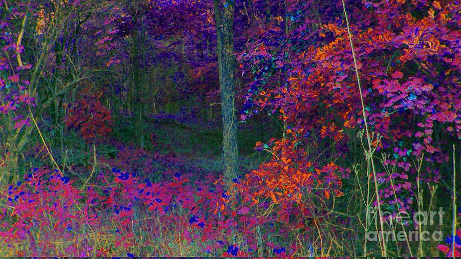 Autum Digital Art - Inner Autum by Cheryl Raber