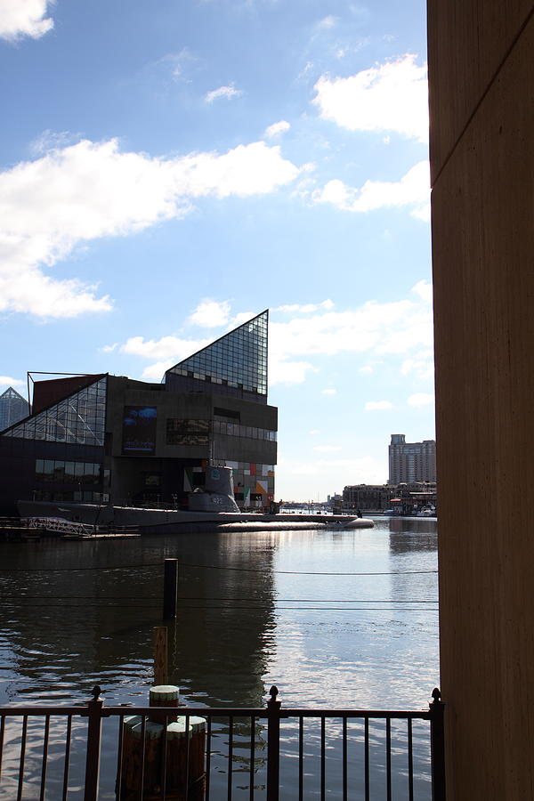 Inner Photograph - Inner Harbor At Baltimore Md - 12125 by DC Photographer