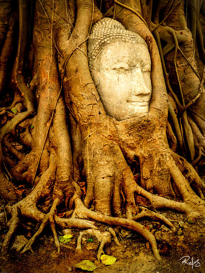 Ayutthaya Photograph - Inner Strength by Allan Rufus