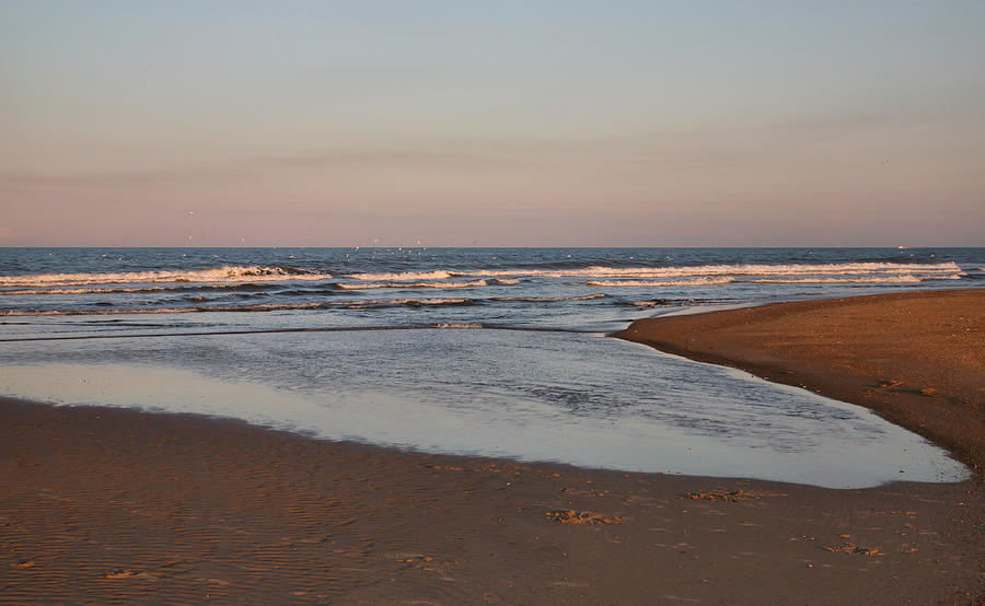 Beach Photograph - Inroads by Steven Ainsworth