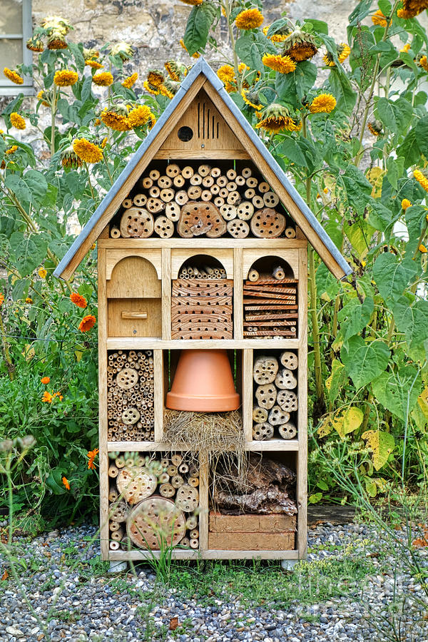 Craftsman Photograph - Insect Hotel by Olivier Le Queinec