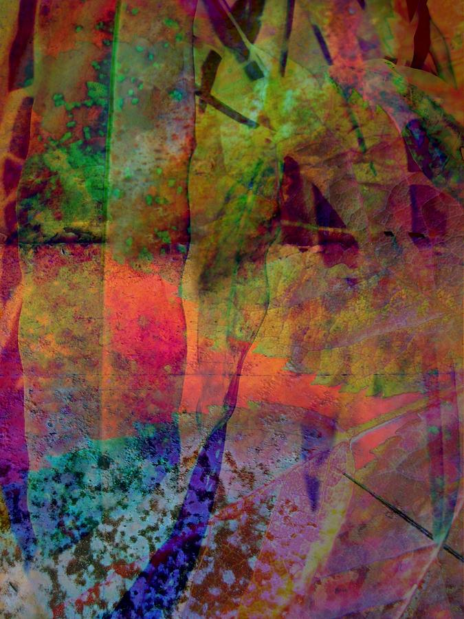 Abstract Photograph - Inside Autumn by Shirley Sirois