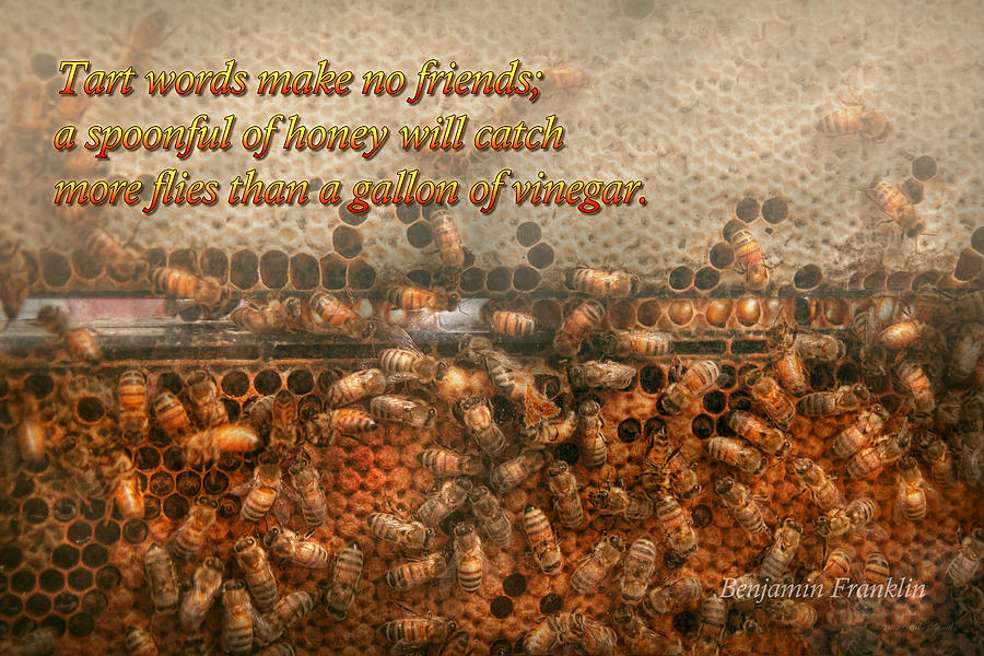 Honey Bee Photograph - Inspiration - Apiary - Bees - Sweet Success - Ben Franklin by Mike Savad