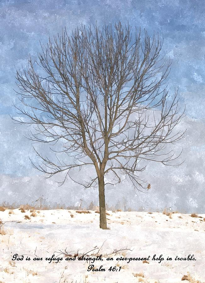 Tree Photograph - Inspirations 3 by Sara  Raber