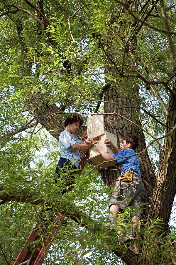 Community Photograph - Installing A Nesting Box by Jim West