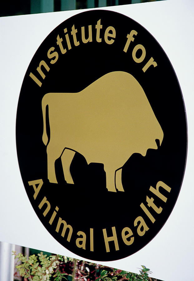 Iah Photograph - Institute For Animal Health Sign by David Hay Jones/science Photo Library