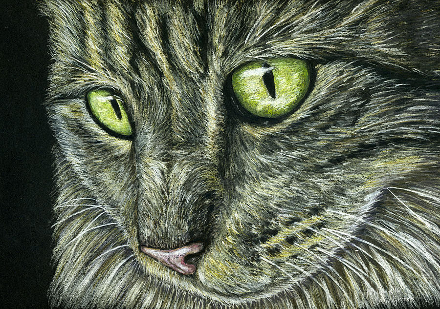 Cat Painting - Intense by Michelle Wrighton