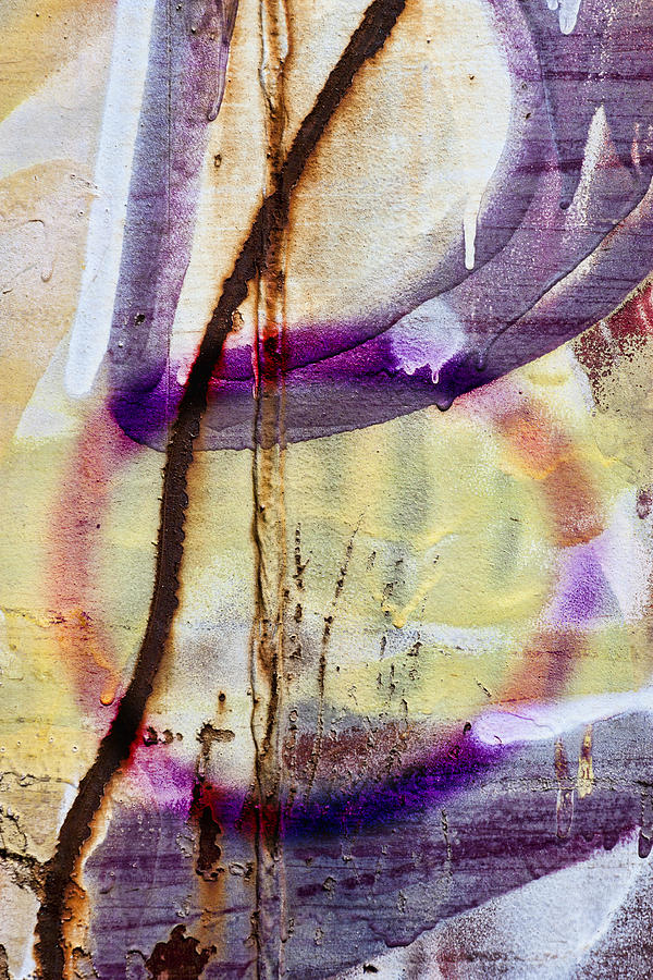 Graffiti Photograph - Interconnected by Carol Leigh